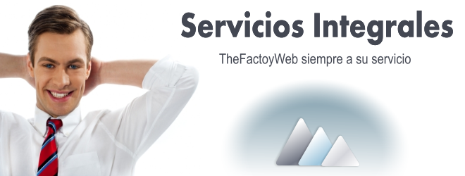TheFactoyWeb , Servicios Web Integrales
