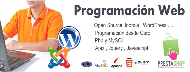 Programación de Sistemas y Sitios Web
